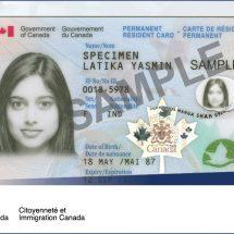 加拿大华人长期外派 被取消加永久居民资格